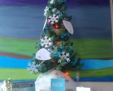 medbest giving tree